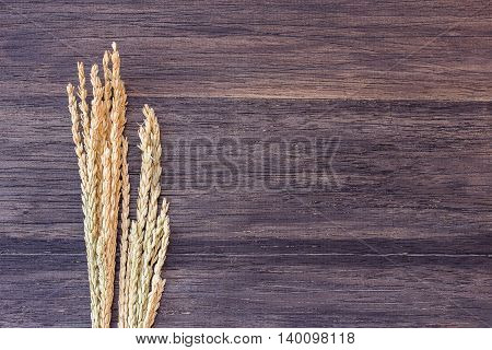 Wheat on the dark wooden table background. top view with copyspace