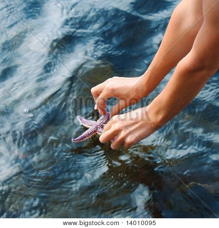 Saving the starfish