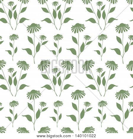 Seamless plant background. Endless pattern with green Echinacea plant silhouette. Vector illustration on white background