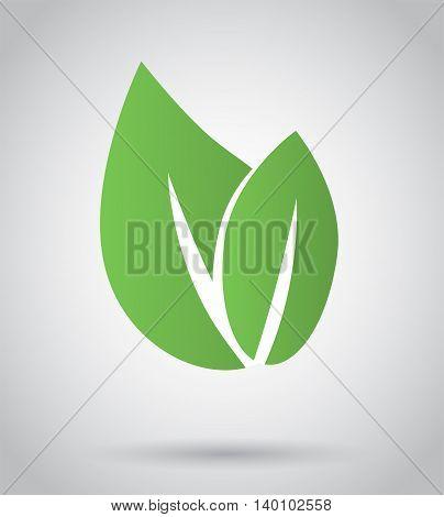 Eco icon green leaf, vector illustration on grey background