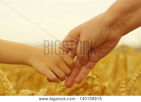 Hands of mother and daughter holding each other on wheat field