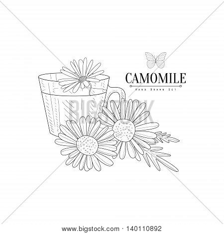 Camomile Herbal Tea Hand Drawn Realistic Detailed Sketch In Classy Simple Pencil Style On White Background