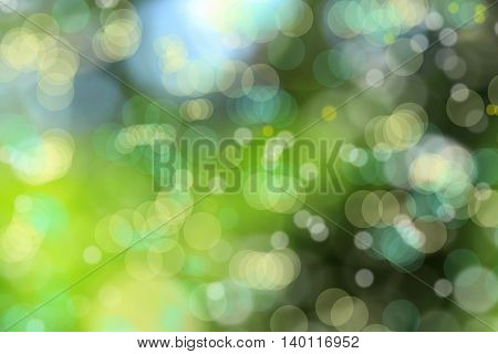 close up shot of green textured background