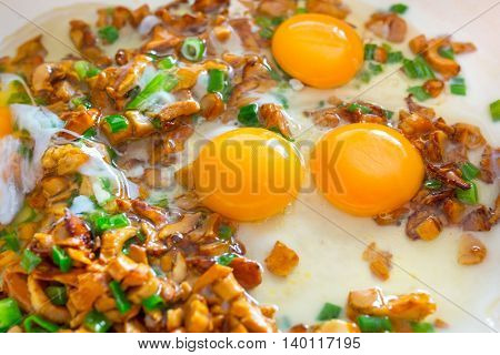 Frying eggs with sliced golden chanterelle fungus and chives