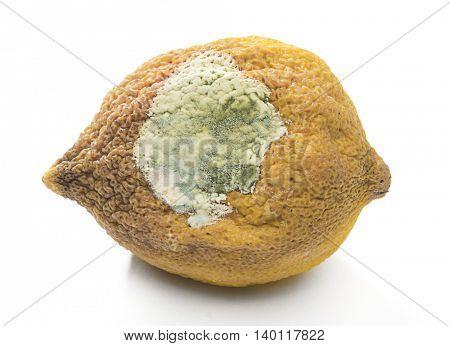 Rotten lemon close up isolated on white background