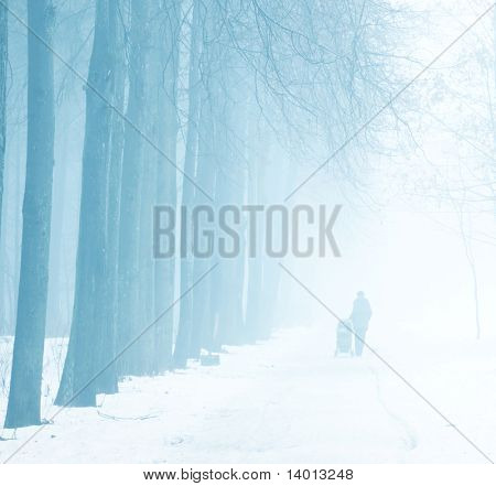 Silhouette of mother with baby in carriage in winter park