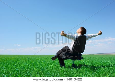 Young businessman sitting on chair in green meadow
