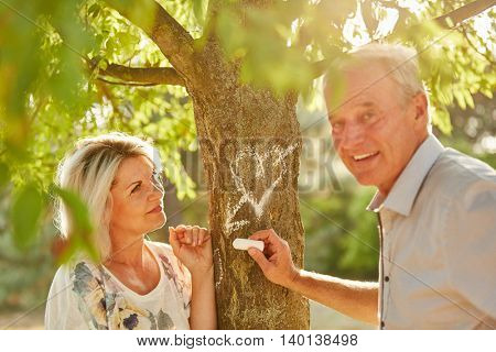 Seniors in love drwaing a heart with chalk on a tree in summer