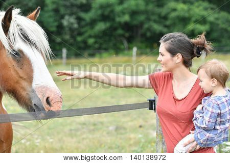 Mother with little girl feeding horses in field