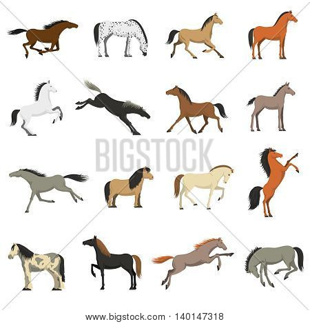 Best horses breeds icons collection for work sport and entertainment with shetland pony abstract isolated vector illustration