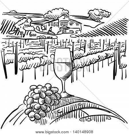 Vineyard With Hills And Glass Of Vine In Foreground