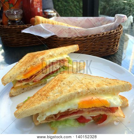 Closeup of bacon tomato lettuce toasted sandwich with blur boken food dish and food seasoning background