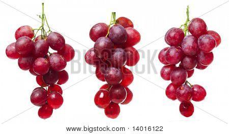 Purple grape bunches with green stems isolated on white
