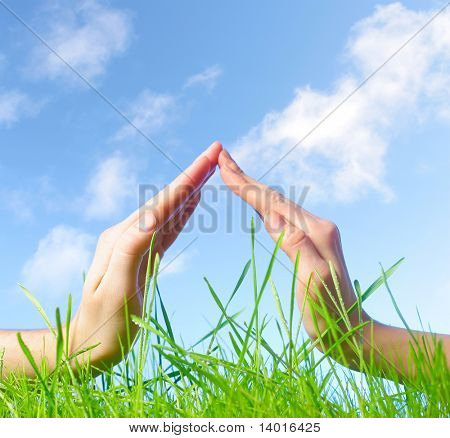 Hand sign above green wet grass over blue sky background