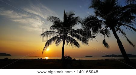 Warm and quiet sunrise on a tropical island with palm trees and overlooking the sea.