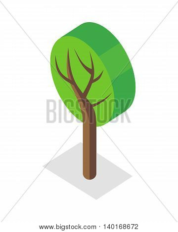Tree vector illustration in isometric projection. Plant picture for nature, gardening concepts Isolated on white background.