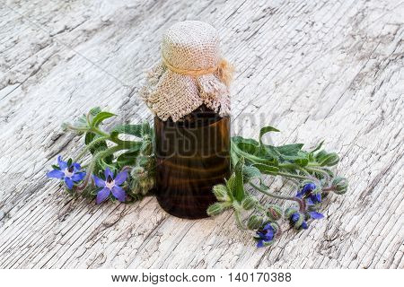 Borage (Borago officinalis) and borage oil in pharmaceutical bottle on old wooden table. The plant is used in herbal medicine healthy food oil from the seeds is done for cosmetic purposes