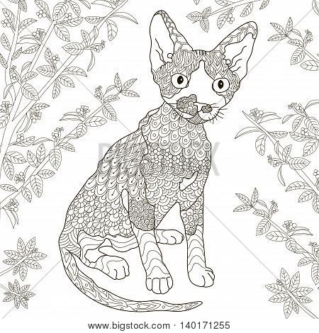Zentangle stylized devon rex cat for coloring page. Anti-stress monochrome pattern. Vector illustration