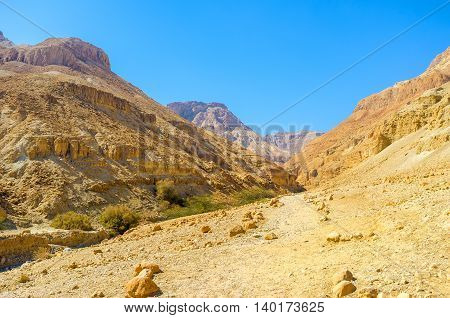 The mountain river in Ein Gedi surrounded by rocky gorge Israel.