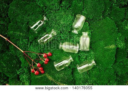 Lot of small glass vials lying on the lush moss and next to a branch of red berries of Hypericum