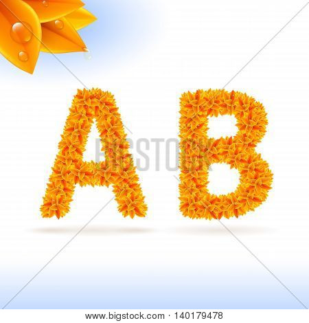 Sans serif font with orange leaf decoration on white background. A and B letters