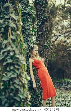 Sensual Girl In Forest