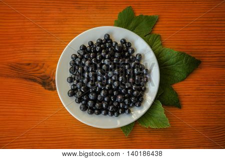 black forest berry blueberries on a wooden table in a white saucer gifts of nature