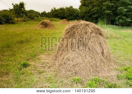 Haystacks Country Side With Hay Bales On A Sunny Day