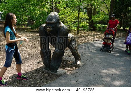 BROOKFIELD, ILLINOIS / UNITED STATES - MAY 21, 2016: A girl approaches a bronze sculpture of a silverback gorilla.