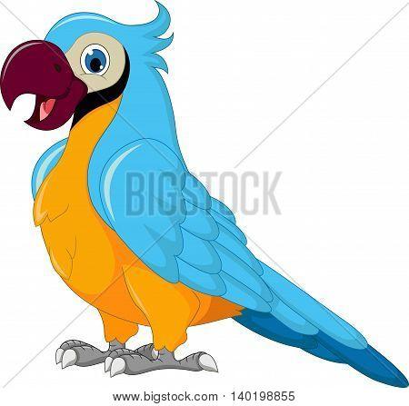 cute parrot cartoon standing for you design