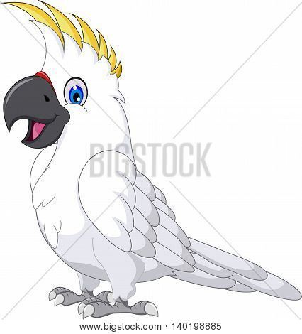 funny cockatoo cartoon posing for you design