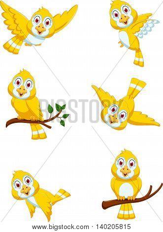 set of cute yellow bird cartoon posing