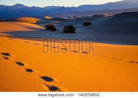 Sandy Desert in Mesquite Flat. Bizarre twists of orange sand dunes. On the slopes of the dunes can be seen deep footprints of humans and animals