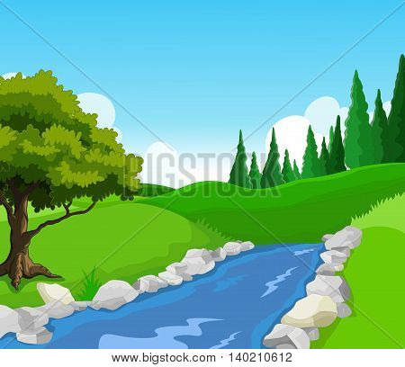 beauty lake with pine forest landscape background