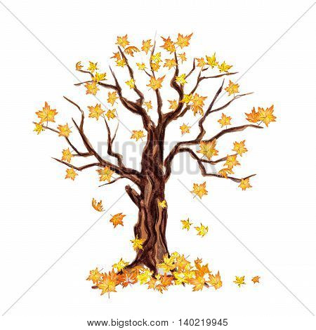 Isolated watercolor dry tree on white background. Fall, autumn, spring nature. Fine tree. Yellow leaves falling.