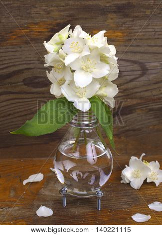 Handmade light bulb vase with jasmine flowers on the background of aged board.