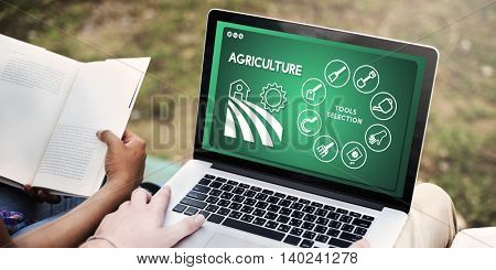 Agriculture Farm Crops Production Plants Concept