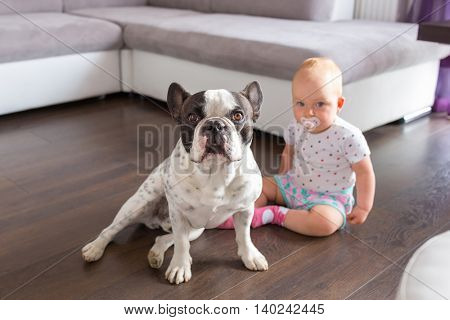 Baby girl sitting with french bulldog on the floor