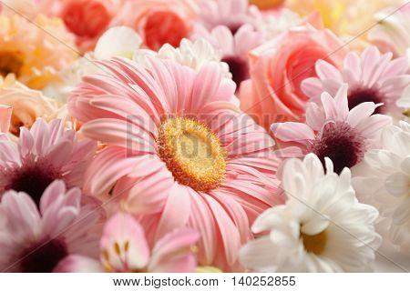 Beautiful flowers background, close up