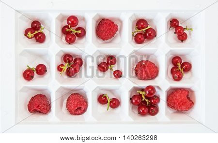Fresh berries raspberry and red currant in square form