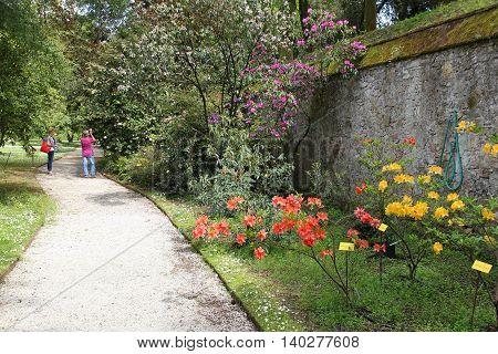 Lucca Botanical Garden