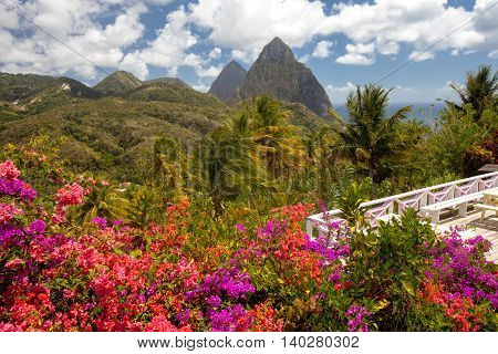 Tropical flowers, Piton mountains on Caribbean island of St Lucia. Patio overlooking lush plants forest mountains on Saint Lucia by the ocean Soufriere Bay. Puffy white clouds blue sky sunny day.