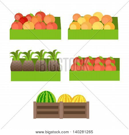 Set of boxes with fruits. Vector in flat design. Fresh apples, oranges, pineapples, pomegranate, melons, watermelons on market. Delivery products, assortment illustration. Isolated on white