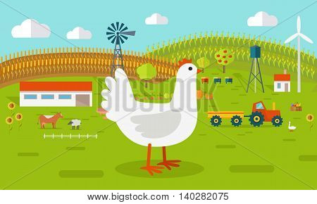 Farmyard vector illustration. Flat design. Hen standing against the farm landscape, tractor, cow, fields on background. Organic farming concept. Traditional agriculture. Modern ecological farm.