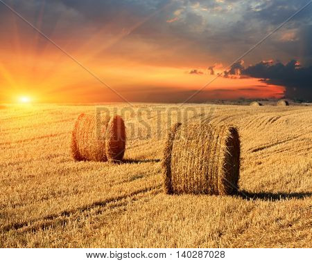 evening sunset scene with hay rolls on farming field