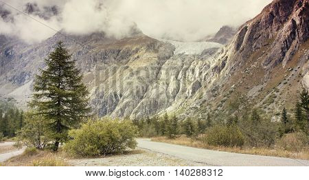 Nature landscape website banner of beautiful mountains tree and plants