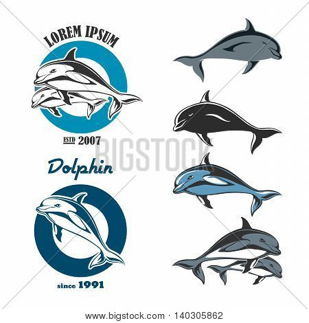 Set of emblem of a dolphin. Isolated labels and objects on a white background