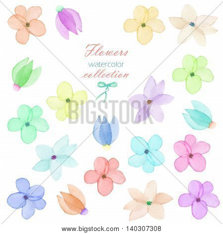 Floral set with the isolated watercolor flowers, hand drawn on a white background, for self-compilation of the bouquets and ornaments