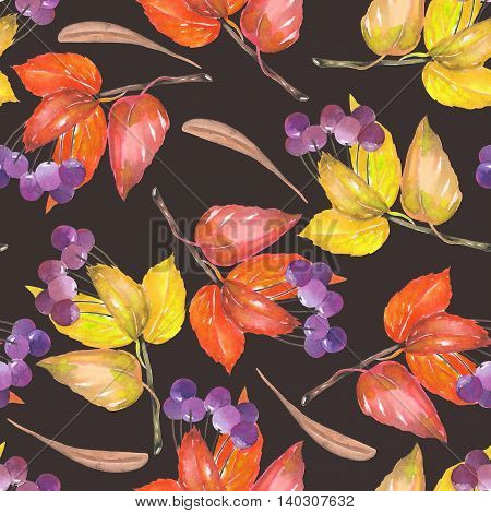 A seamless pattern with a floral ornament of the watercolor red and yellow autumn leaves and purple berries on the branches,viburnum tree on a dark background