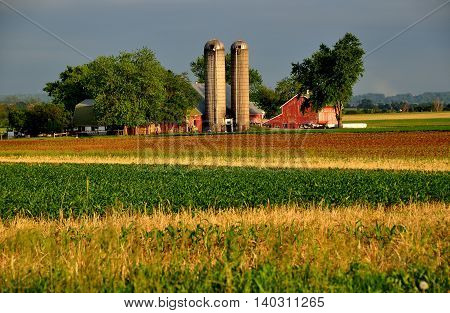 Lancaster County Pennsylvania - June 5 2015: Newly planted corn field and an Amish farm with twin silos barns and sheds